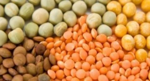 البروتين النباتي قد يعوض العادات غير الصحية