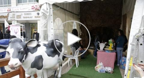 برومو: طارة كرسماس ماركت 2014