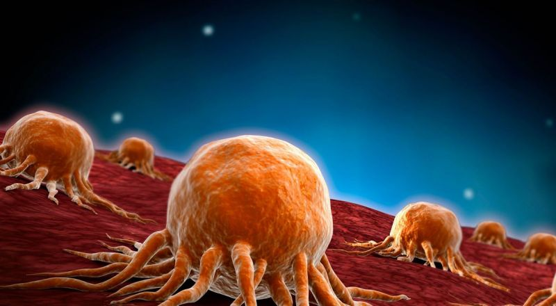 دراسة تفتح باب الأمل.. اكتشاف السرطان قبل وقت طويل من تشخيصه