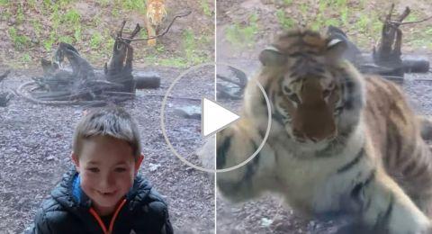 فيديو مرعب لن ينساه هذا الطفل أبدا