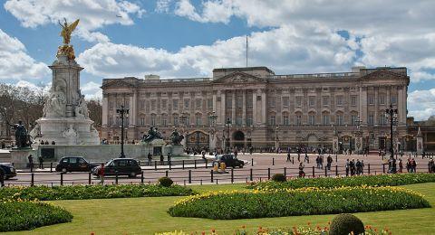الملكة إليزابيث تغادر قصر باكنغهام مرعوبة من الفئران