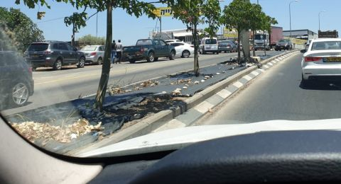 عرابة : اصابة جراء اطلاق نار على محل بيع مواد بناء