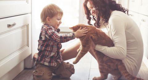 تربية القطط والكلاب تحمي الأطفال من خطر مرض منتشر!