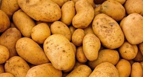 خبر هام لعشاق البطاطا.. هل يمكن أكلها إذا نمت عليها البراعم؟