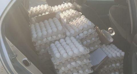 أم الفحم: اعتقال مشتبه (20 عامًا) بعد ضبط 640 كرتونة بيض غير صالحة للاكل