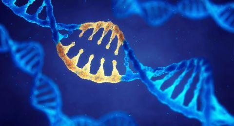 أول تجربة تعديل جيني بشرية لعلاج مرض نادر!