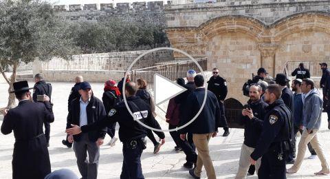 وزير الزراعة الإسرائيلي يقتحم ساحات مسجد الأقصى