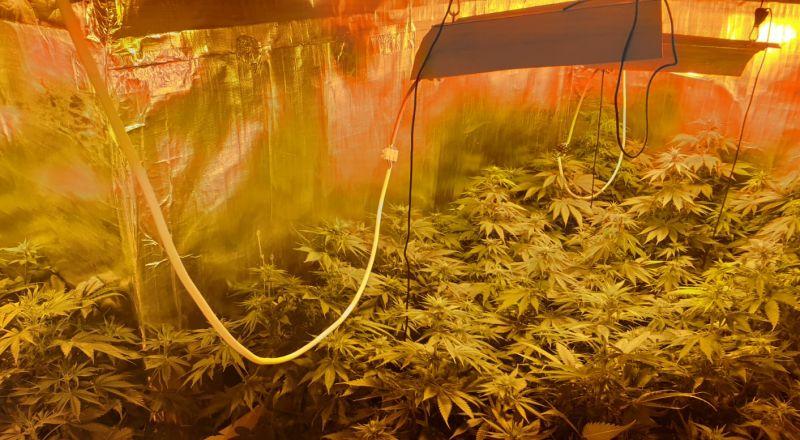 ضبط مختبر لترويج المخدرات الخطرة داخل شقة في مدينة الخضيرة
