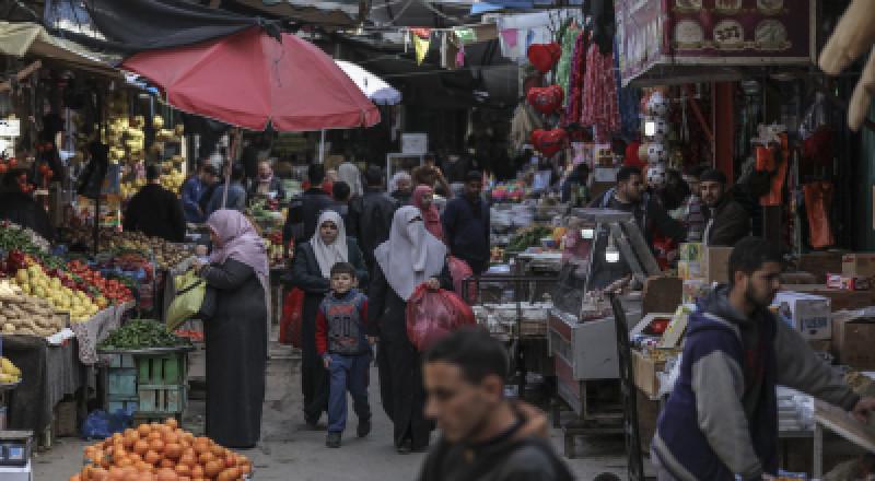 غزة تصدر 10 آلاف طن خضار في يناير وفبراير