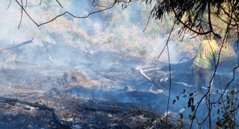 حرائق في احراش شماليّ البلاد