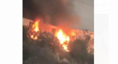 شبان يضرمون النار في البؤرة الاستيطانية على جبل صبيح