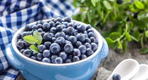 فوائد التوت الأزرق تتجاوز التوقعات.. أدخلوه بنظامكم الغذائي بأسرع وقت!