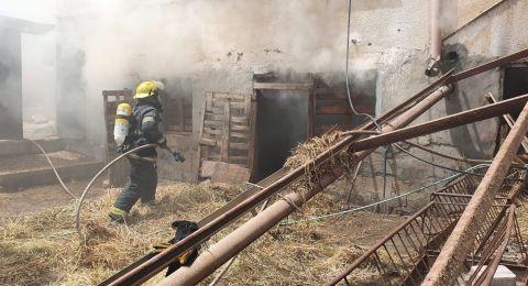 نفوق واصابة عدد من الطيور جراء حريق في يافة الناصرة