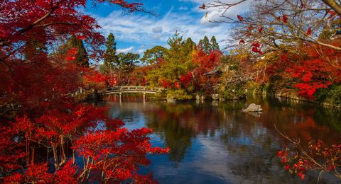أجمل 3 مدن بألوان الخريف .. ستودون زيارتها