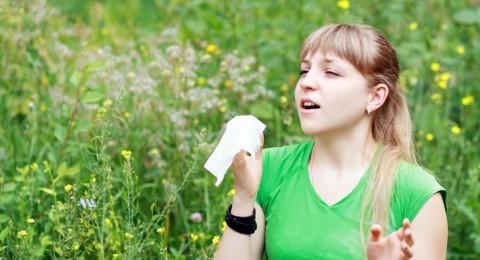 طريق الوقاية من حساسية الربيع