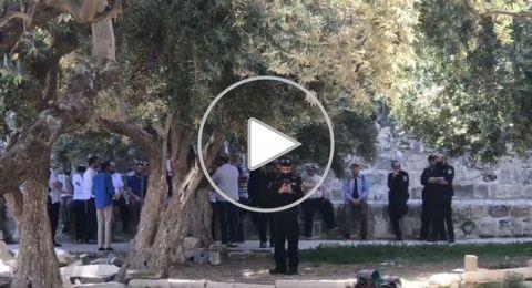 مستوطنون يقتحمون الاقصى والشرطة الاسرائيلية تحاصر المصلين