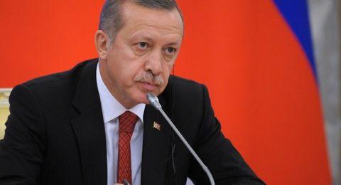 أردوغان: عدة دول تنتظر فرصة لركلنا!