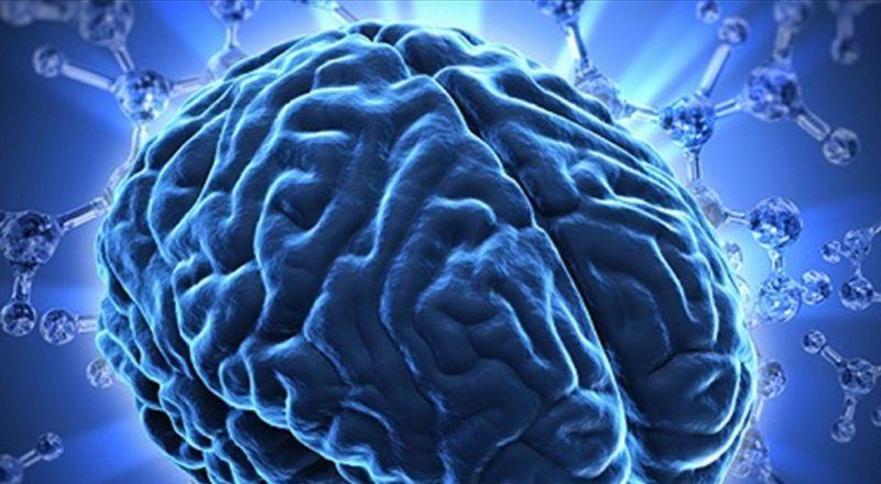 تحذير من عدوى فيروسية آكلة للدماغ!