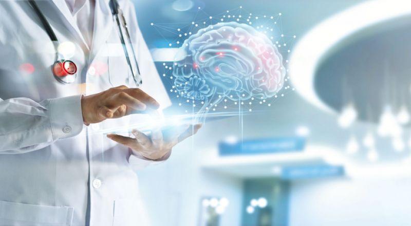 علماء: الدماغ