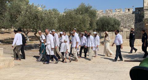 74 مستوطنا يقتحمون الاقصى بحجة الاعياد اليهودية