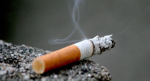 في اليوم العالمي لمكافحة التدخين: معظم المدخنين من شبابنا، يدخون الأرجيلة .. وهي الأكثر شيوعًا بين الشابات أيضًا