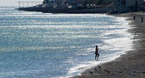 صورة لكائن بحري غريب على أحد الشواطئ!