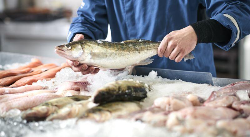 دراسة: أحشاء الأسماك وعظامها أكثر فائدة من لحومها