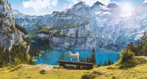 10 أمور يجب ان تعرفها قبل السفر الى سويسرا