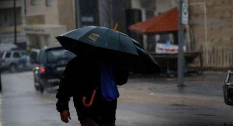 وزارة الزراعة في السلطة الفلسطينية: كميات الأمطار تبشر بموسم زراعي جيد
