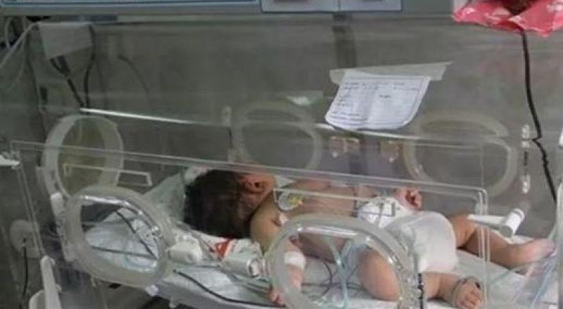 غزة: أكثر من 57 ألف مولود جديد خلال 2018