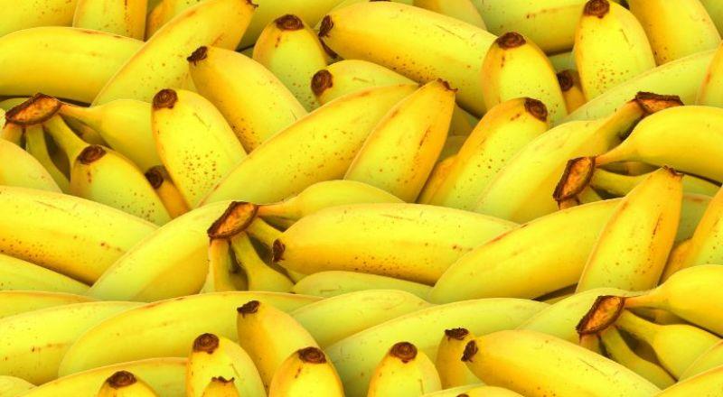 لصحة أفضل وعُمر أطول.. كم تحتاجون من الموز أسبُوعيًا؟