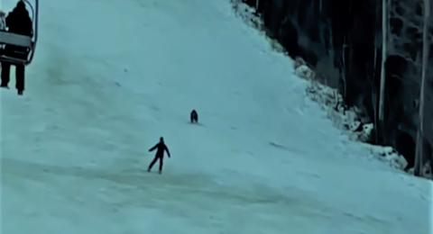 دب يطارد متزلج على الجليد: كأنها مغامرة شرسة في فيلم كرتون -فيديو