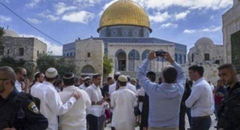 80 مستوطنًا وشرطيًا إسرائيليًا يقتحمون باحات الأقصى