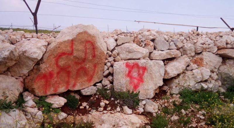 مستوطنون يقطعون 550 شجرة كرمة ولوزيات في أراضي دير جرير شمال شرق رام الله